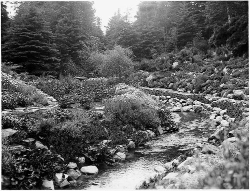Photo: Robert W. Reford, Collection Jardins de Métis